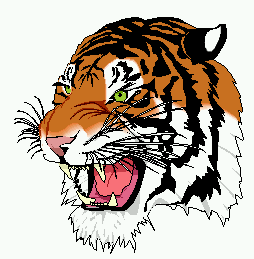 An image of a cartoonish tiger head