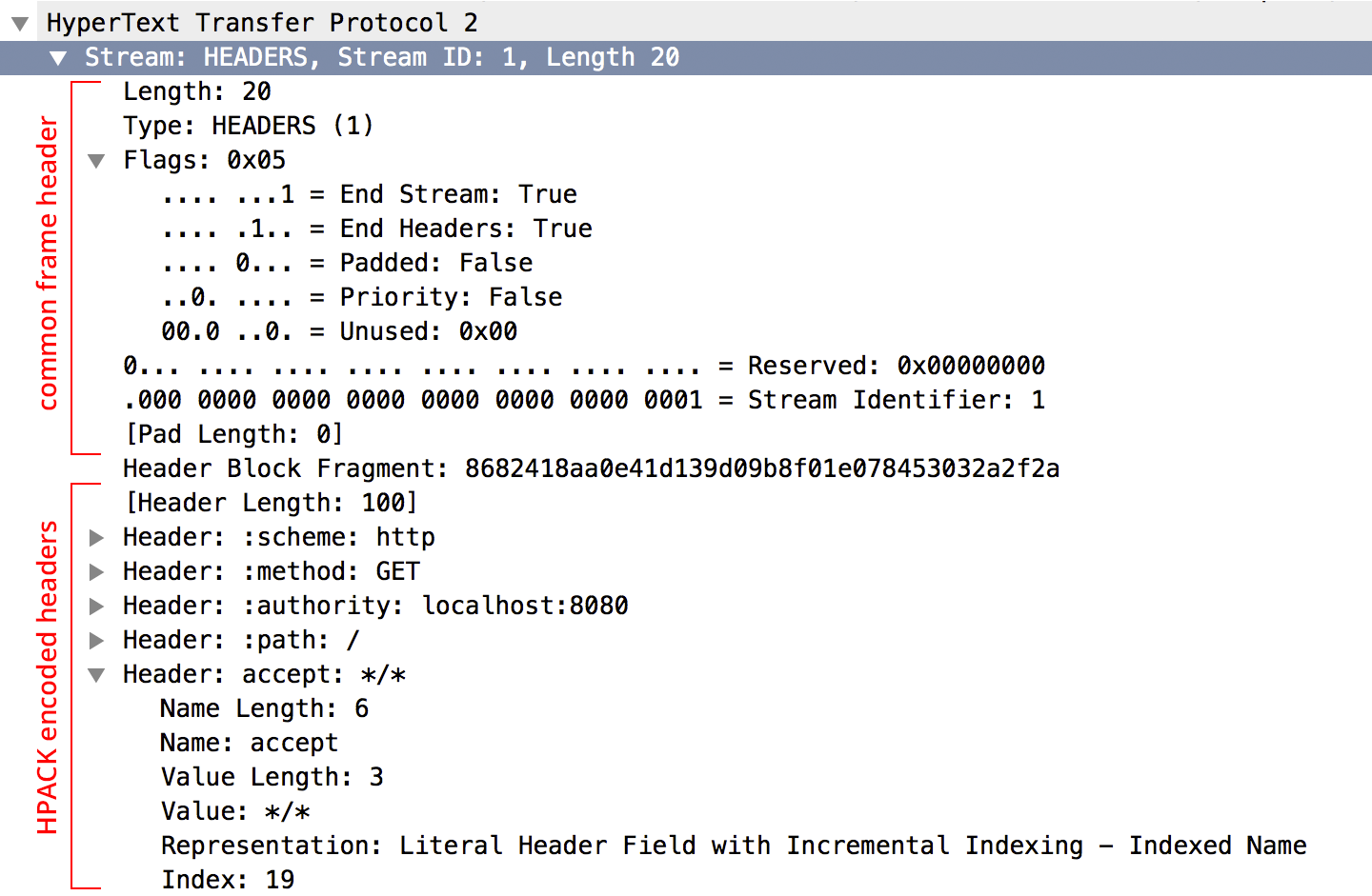 Decoded HEADERS frame in Wireshark