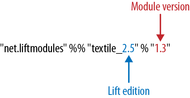 The structure of a module version