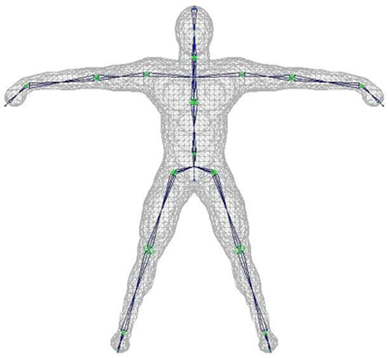 A Character Mesh with Underlying Skeleton, Suitable for Skinned Animation