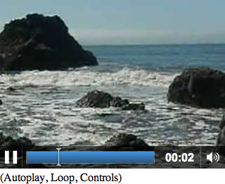 HTML5 video embed with controls