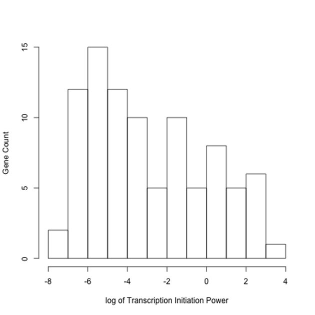 Histogram of relative protein to mRNA abundance ratio (power) for the chloroplast proteome. Using the median value of the microarray intensity, the power varied over a factor of 58,000.